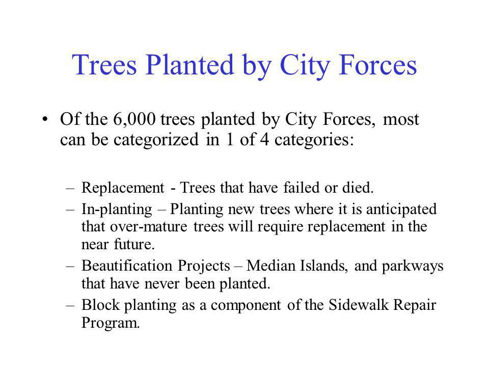 Trees Planted by City Forces Of the 6,000 trees planted by City Forces, most can be categorized in 1 of 4 categories: –Replacement - Trees that have failed or died.
