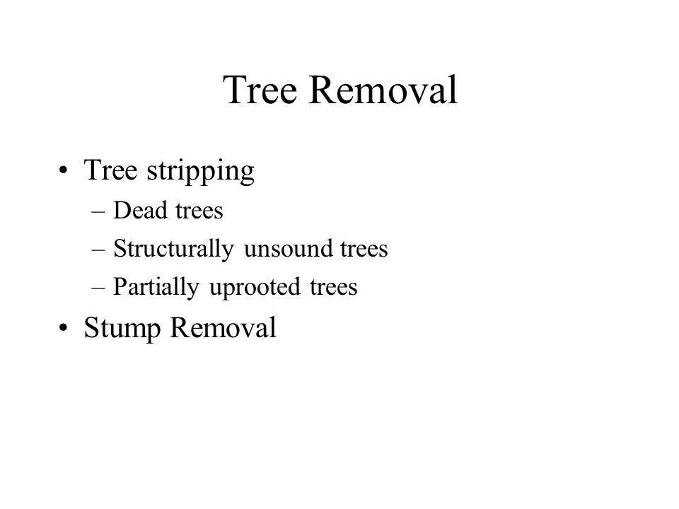Tree Removal Tree stripping –Dead trees –Structurally unsound trees –Partially uprooted trees Stump Removal