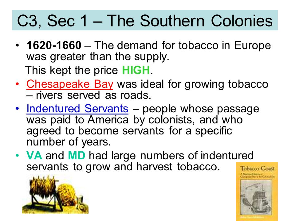 C3, Sec 1 – The Southern Colonies 1620-1660 – The demand for tobacco in Europe was greater than the supply. This kept the price HIGH. Chesapeake Bay w