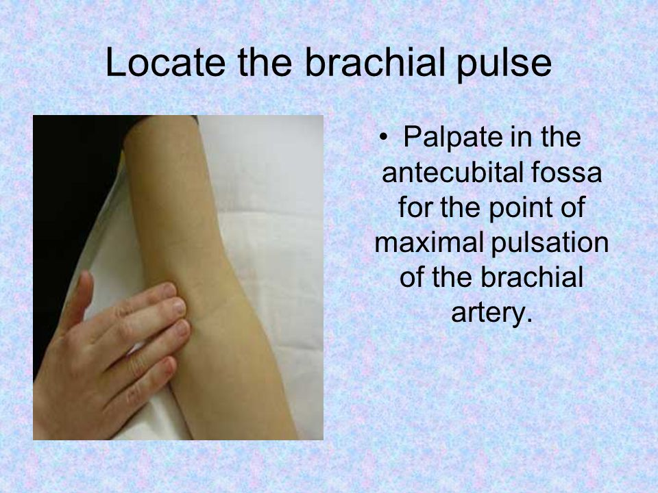 Locate the brachial pulse Palpate in the antecubital fossa for the point of maximal pulsation of the brachial artery.
