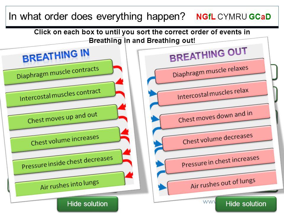 www.ngfl-cymru.org.uk NGfL CYMRU GCaD Show solution In what order does everything happen.