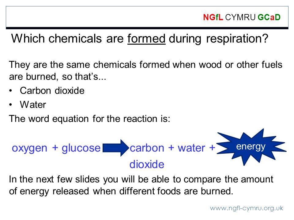 www.ngfl-cymru.org.uk NGfL CYMRU GCaD Which chemicals are formed during respiration.