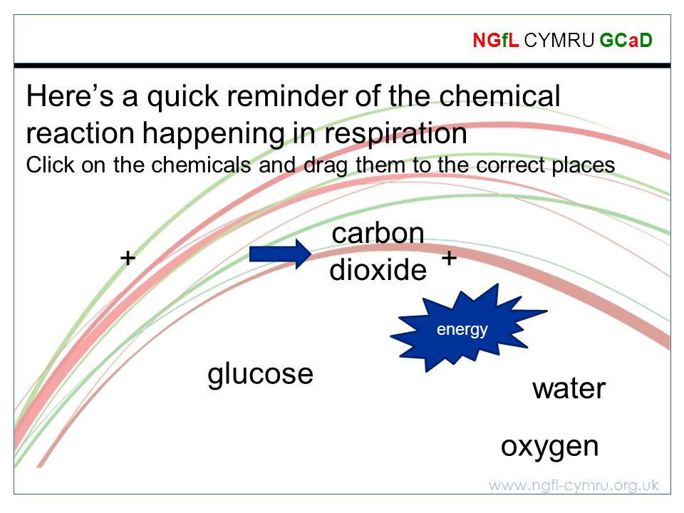 www.ngfl-cymru.org.uk NGfL CYMRU GCaD Heres a quick reminder of the chemical reaction happening in respiration Click on the chemicals and drag them to the correct places + + glucose carbon dioxide energy oxygen water