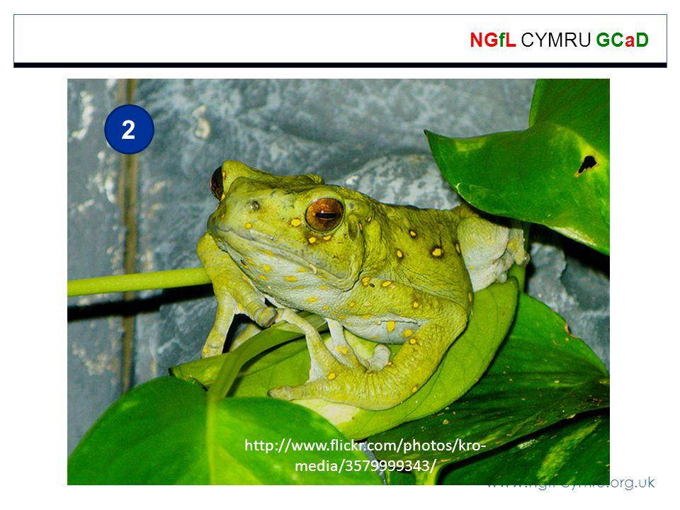 www.ngfl-cymru.org.uk NGfL CYMRU GCaD 2 http://www.flickr.com/photos/kro- media/3579999343/