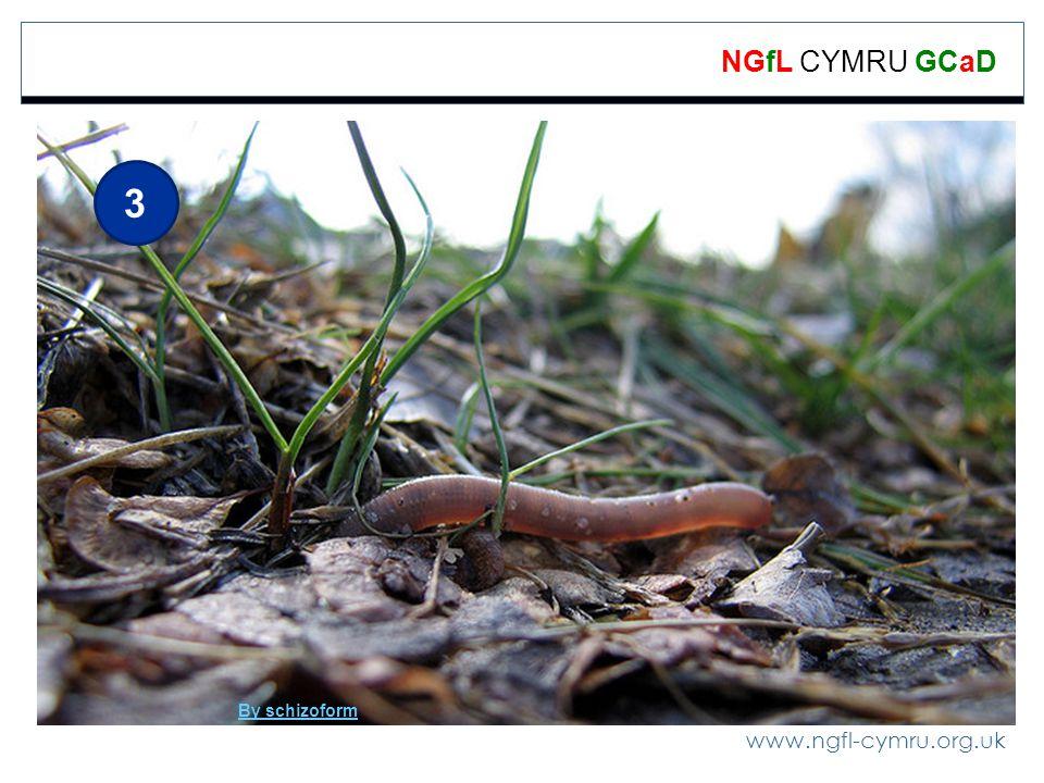 www.ngfl-cymru.org.uk NGfL CYMRU GCaD 3 By schizoform