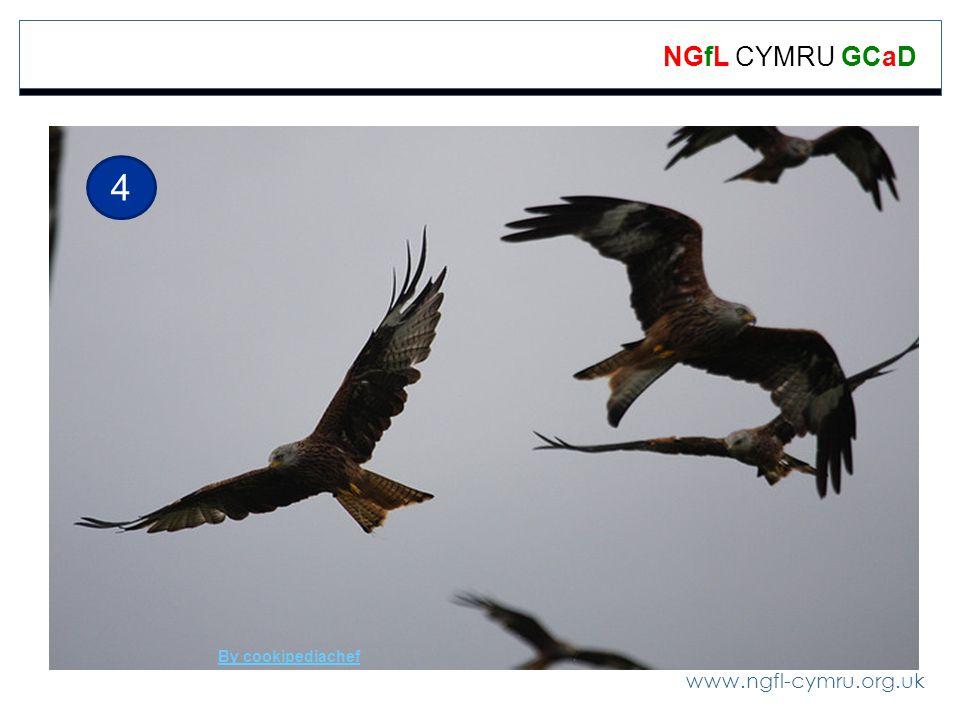 www.ngfl-cymru.org.uk NGfL CYMRU GCaD 4 By cookipediachef