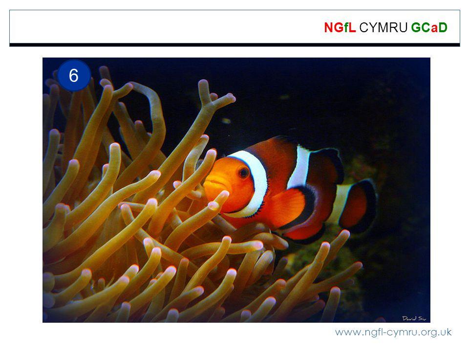 www.ngfl-cymru.org.uk NGfL CYMRU GCaD 6