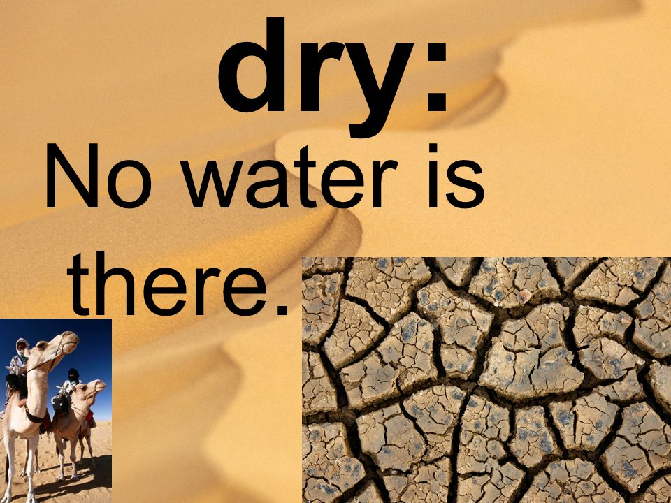 dry: No water is there.