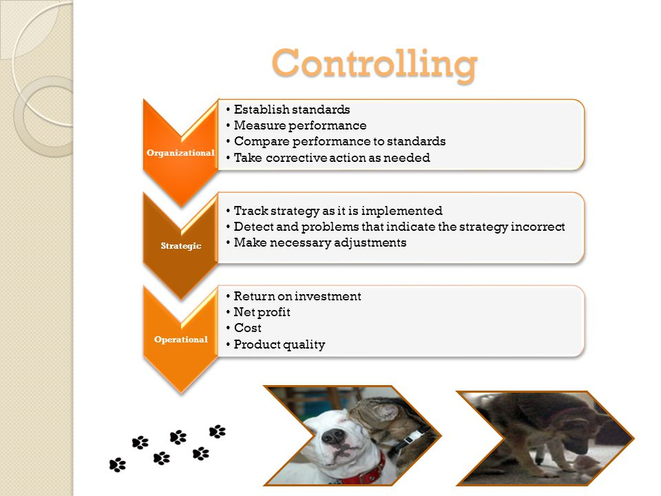 Controlling Organizational Establish standards Measure performance Compare performance to standards Take corrective action as needed Strategic Track strategy as it is implemented Detect and problems that indicate the strategy incorrect Make necessary adjustments Operational Return on investment Net profit Cost Product quality