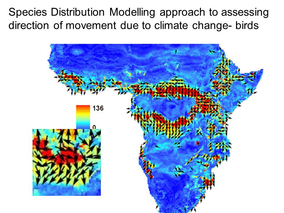 Species Distribution Modelling approach to assessing direction of movement due to climate change- birds