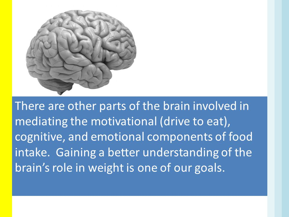 There are other parts of the brain involved in mediating the motivational (drive to eat), cognitive, and emotional components of food intake. Gaining