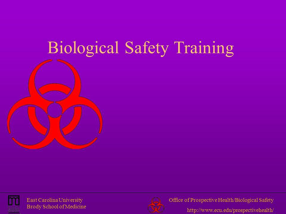 East Carolina University Brody School of Medicine Office of Prospective Health/Biological Safety http://www.ecu.edu/prospectivehealth/ Biological Safe