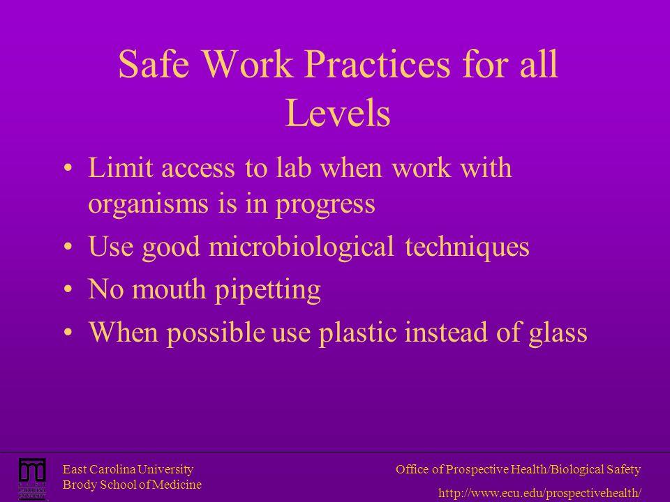 East Carolina University Brody School of Medicine Office of Prospective Health/Biological Safety http://www.ecu.edu/prospectivehealth/ Safe Work Pract