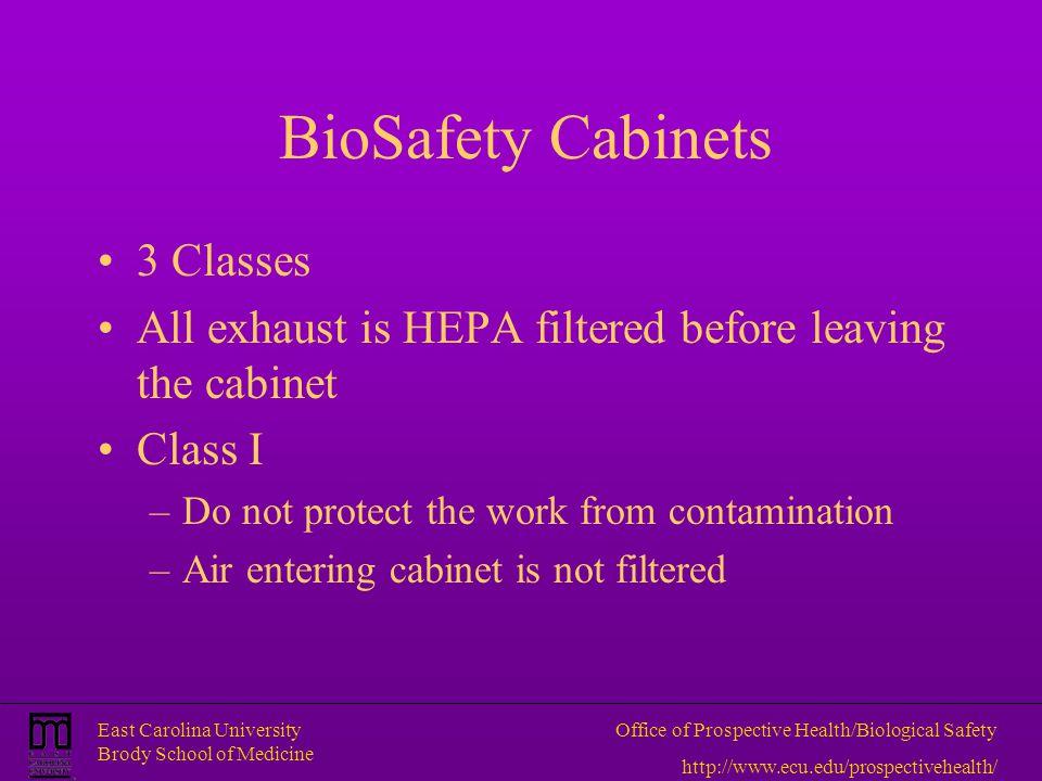 East Carolina University Brody School of Medicine Office of Prospective Health/Biological Safety http://www.ecu.edu/prospectivehealth/ BioSafety Cabin