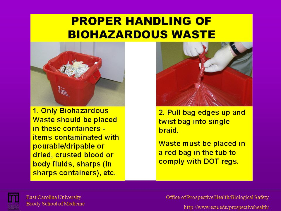 East Carolina University Brody School of Medicine Office of Prospective Health/Biological Safety http://www.ecu.edu/prospectivehealth/