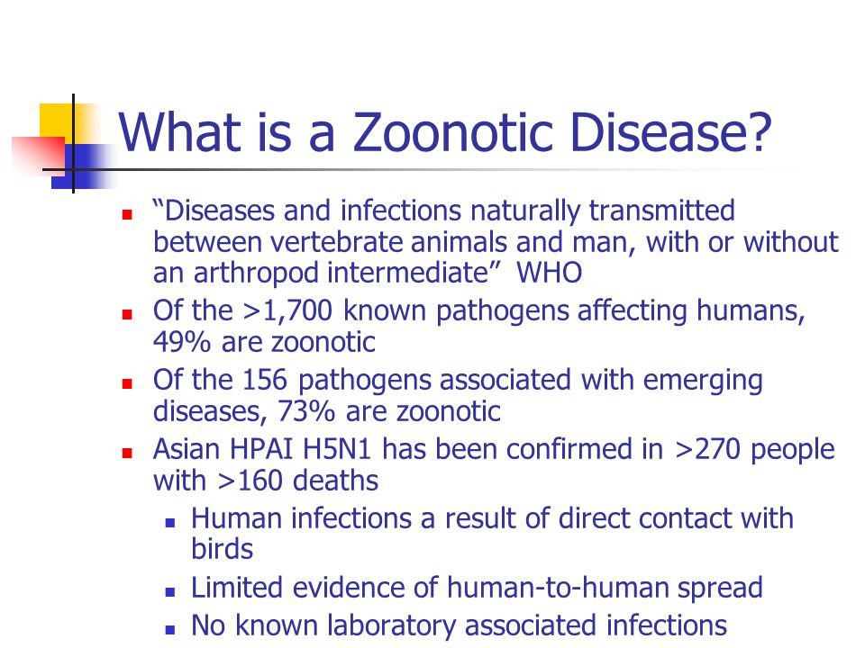 What is a Zoonotic Disease.