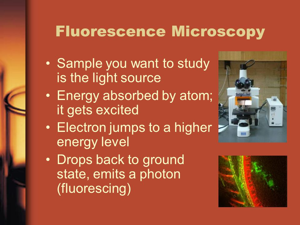 Fluorescence Microscopy Sample you want to study is the light source Energy absorbed by atom; it gets excited Electron jumps to a higher energy level Drops back to ground state, emits a photon (fluorescing)