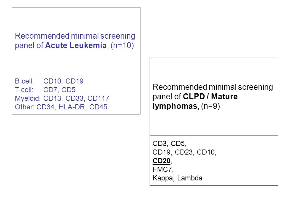 B cell:CD10, CD19 T cell: CD7, CD5 Myeloid: CD13, CD33, CD117 Other: CD34, HLA-DR, CD45 Recommended minimal screening panel of Acute Leukemia, (n=10)