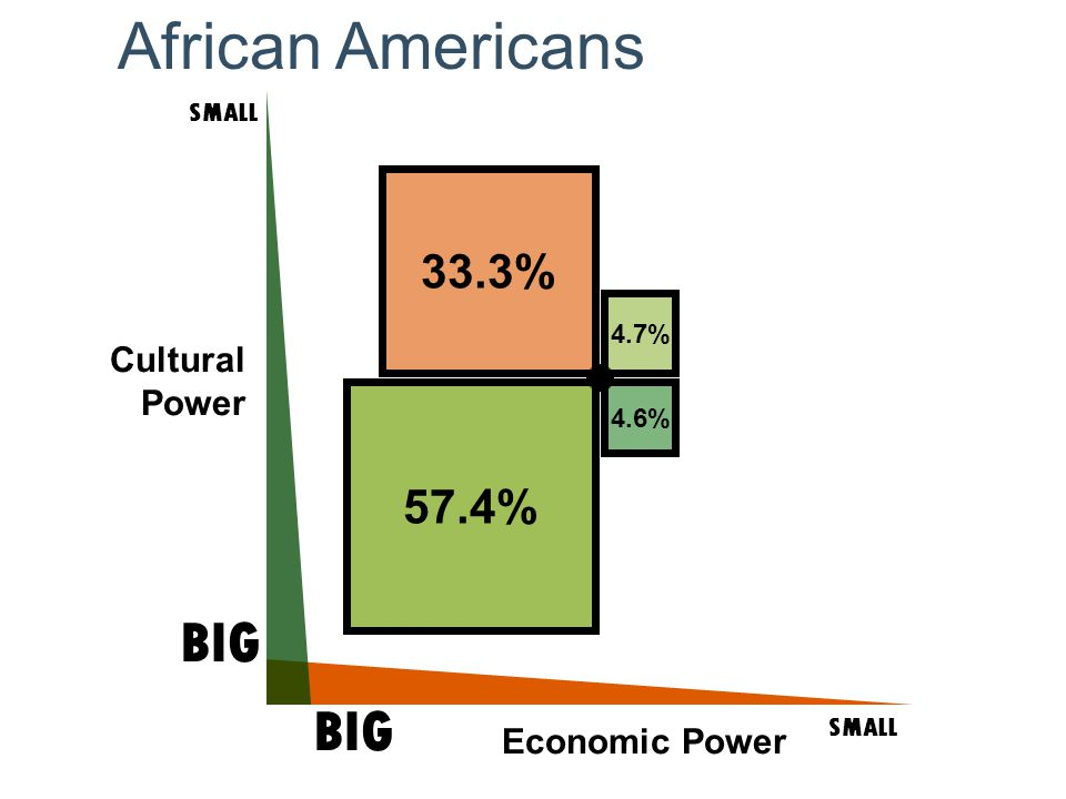 Cultural Power SMALL BIG SMALL BIG Economic Power 4.6% 57.4% 33.3% 4.7% African Americans