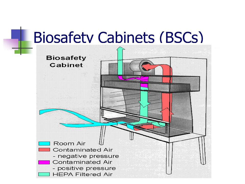 Biosafety Cabinets (BSCs)