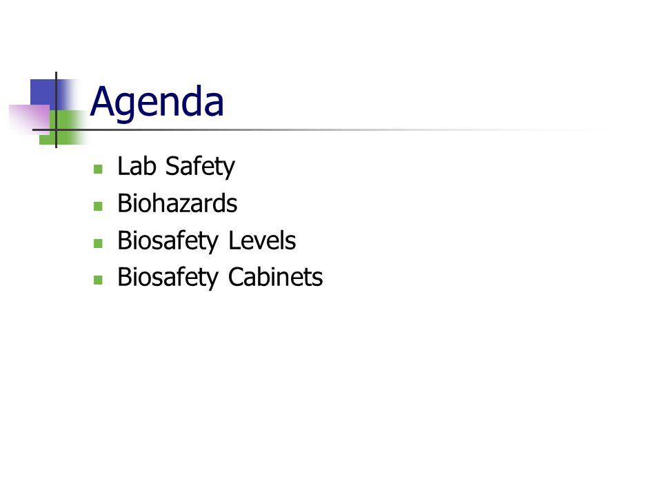 Agenda Lab Safety Biohazards Biosafety Levels Biosafety Cabinets
