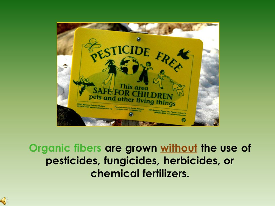 Organic fibers are grown without the use of pesticides, fungicides, herbicides, or chemical fertilizers.