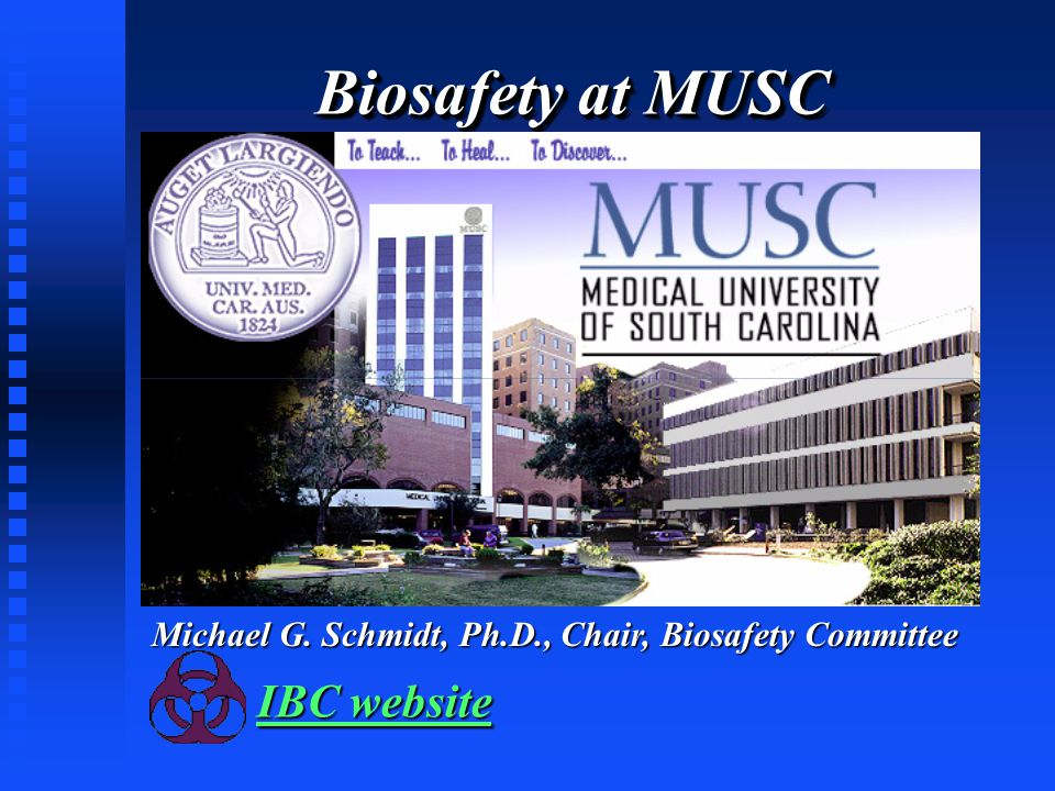 Biosafety at MUSC IBC website IBC website Michael G. Schmidt, Ph.D., Chair, Biosafety Committee