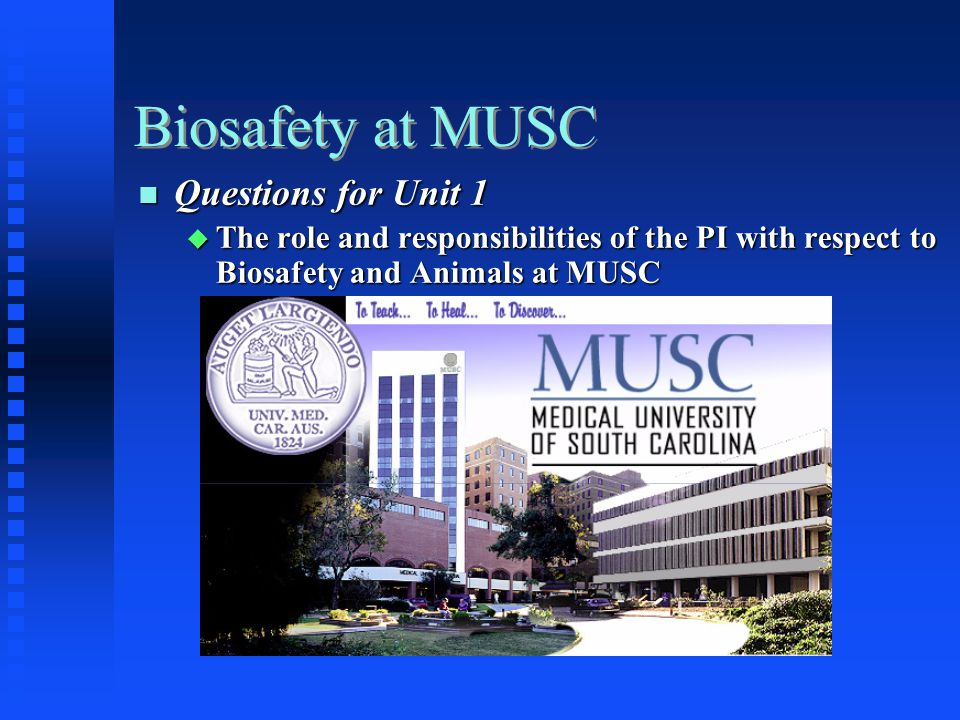 Biosafety at MUSC Questions for Unit 1 Questions for Unit 1 The role and responsibilities of the PI with respect to Biosafety and Animals at MUSC The role and responsibilities of the PI with respect to Biosafety and Animals at MUSC