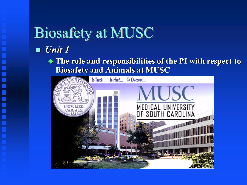 Biosafety at MUSC Unit 1 Unit 1 The role and responsibilities of the PI with respect to Biosafety and Animals at MUSC The role and responsibilities of the PI with respect to Biosafety and Animals at MUSC