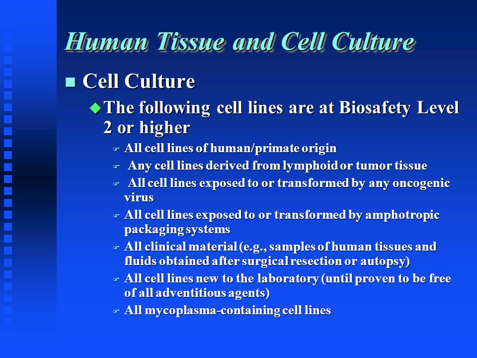 Human Tissue and Cell Culture Cell Culture Cell Culture The following cell lines are at Biosafety Level 2 or higher The following cell lines are at Biosafety Level 2 or higher All cell lines of human/primate origin All cell lines of human/primate origin Any cell lines derived from lymphoid or tumor tissue Any cell lines derived from lymphoid or tumor tissue All cell lines exposed to or transformed by any oncogenic virus All cell lines exposed to or transformed by any oncogenic virus All cell lines exposed to or transformed by amphotropic packaging systems All cell lines exposed to or transformed by amphotropic packaging systems All clinical material (e.g., samples of human tissues and fluids obtained after surgical resection or autopsy) All clinical material (e.g., samples of human tissues and fluids obtained after surgical resection or autopsy) All cell lines new to the laboratory (until proven to be free of all adventitious agents) All cell lines new to the laboratory (until proven to be free of all adventitious agents) All mycoplasma-containing cell lines All mycoplasma-containing cell lines