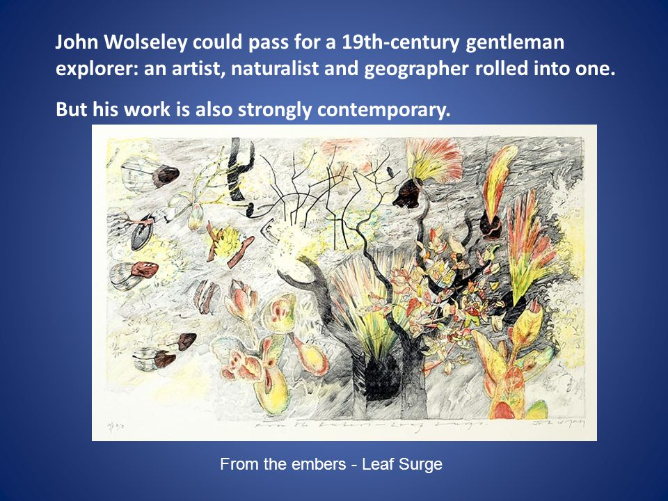 John Wolseley could pass for a 19th-century gentleman explorer: an artist, naturalist and geographer rolled into one. But his work is also strongly co