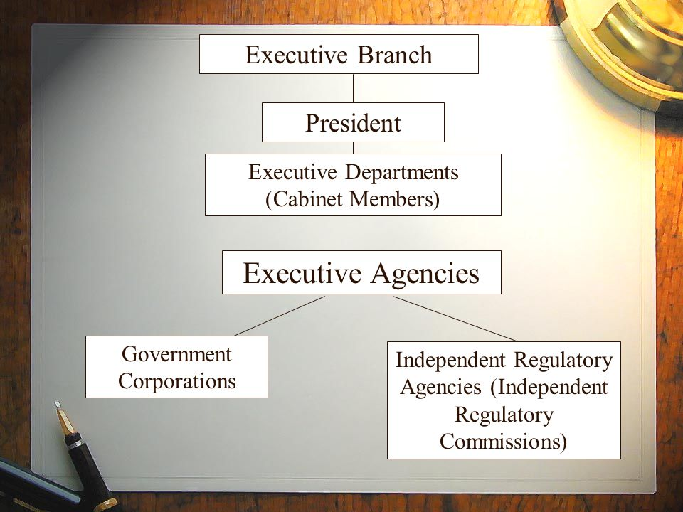 Executive Branch Executive Departments (Cabinet Members) President Executive Agencies Independent Regulatory Agencies (Independent Regulatory Commissi