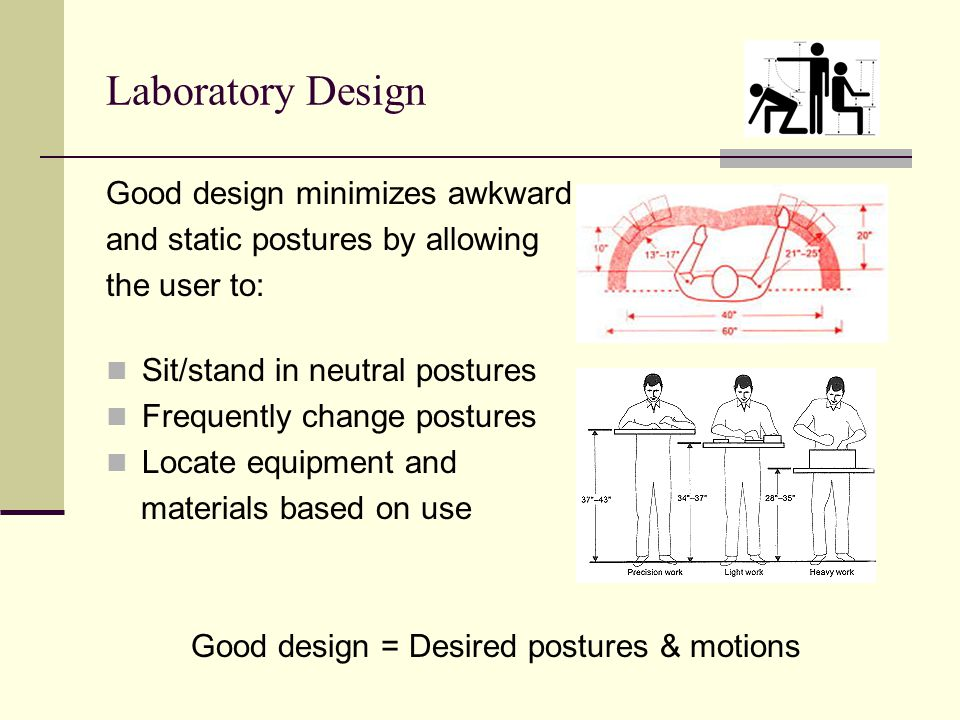 Laboratory Design Good design minimizes awkward and static postures by allowing the user to: Sit/stand in neutral postures Frequently change postures Locate equipment and materials based on use Good design = Desired postures & motions
