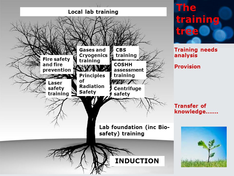 Lab foundation (inc Bio- safety) training INDUCTION Laser safety training Principles of Radiation Safety Gases and Cryogenics training COSHH assessment training Centrifuge safety Fire safety and fire prevention Local lab training The training tree Training needs analysis Provision Transfer of knowledge…….