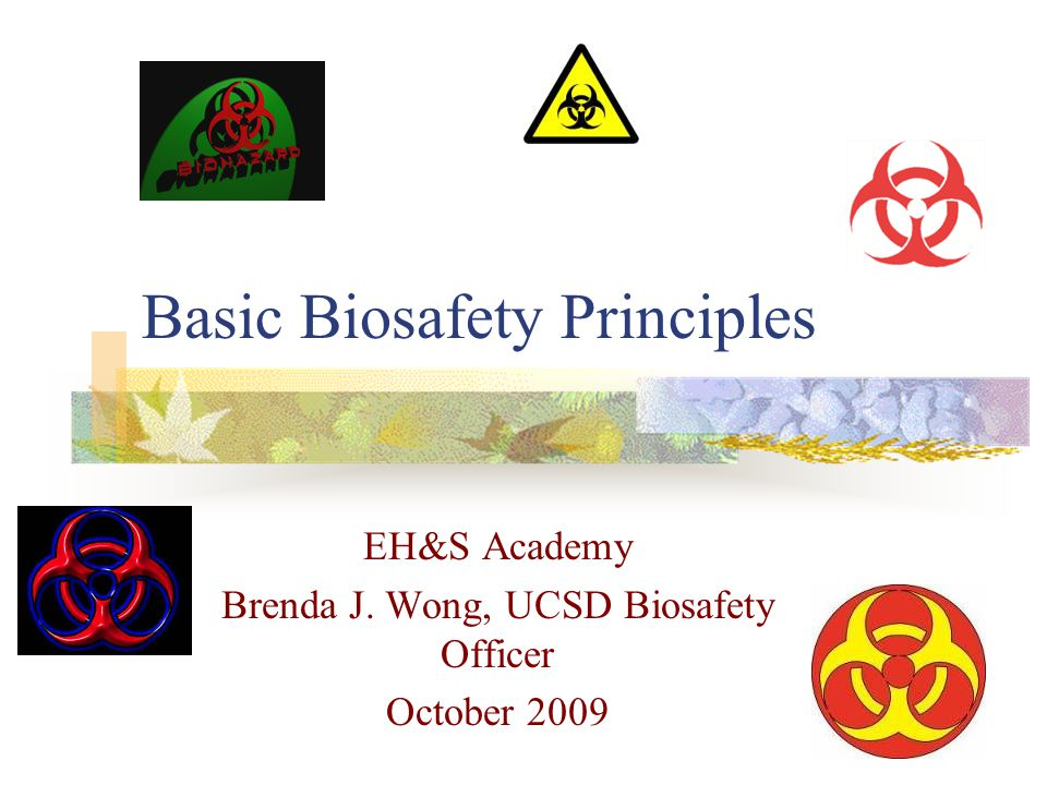 Basic Biosafety Principles EH&S Academy Brenda J. Wong, UCSD Biosafety Officer October 2009