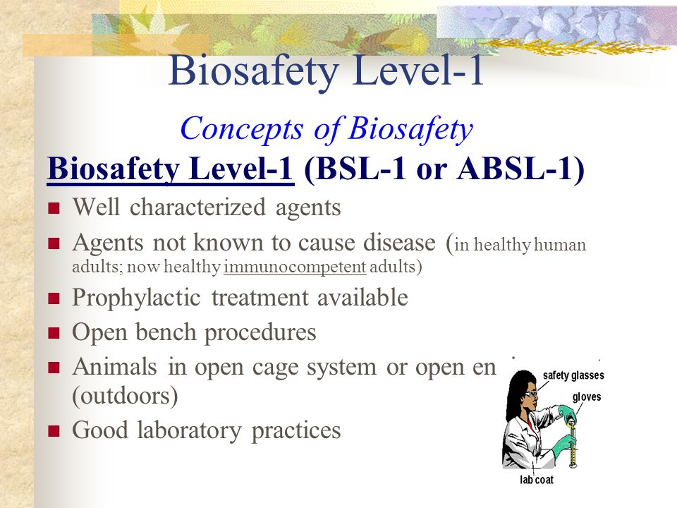 Biosafety Level-1 Concepts of Biosafety Biosafety Level-1 (BSL-1 or ABSL-1) Well characterized agents Agents not known to cause disease ( in healthy h