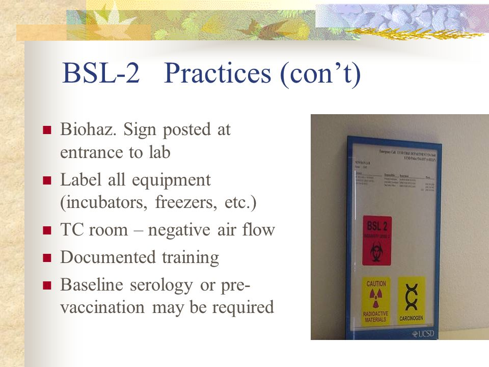 BSL-2 Practices (cont) Biohaz. Sign posted at entrance to lab Label all equipment (incubators, freezers, etc.) TC room – negative air flow Documented