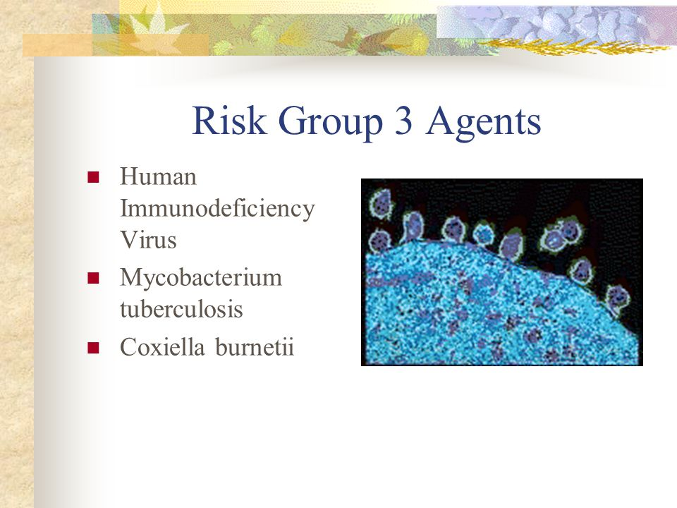 Risk Group 3 Agents Human Immunodeficiency Virus Mycobacterium tuberculosis Coxiella burnetii