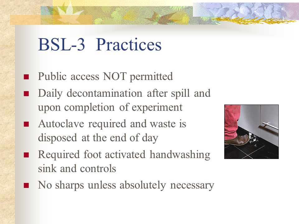 BSL-3 Practices Public access NOT permitted Daily decontamination after spill and upon completion of experiment Autoclave required and waste is dispos
