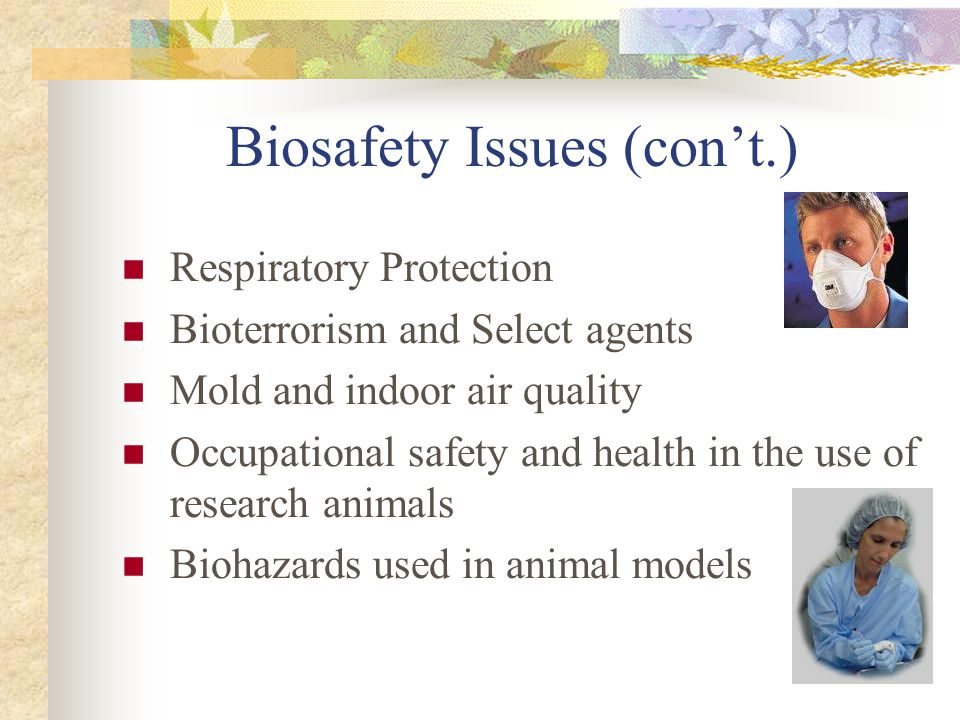 Biosafety Issues (cont.) Respiratory Protection Bioterrorism and Select agents Mold and indoor air quality Occupational safety and health in the use o