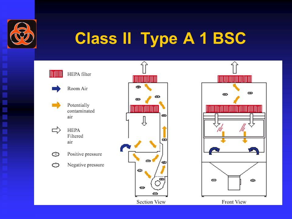 Class II Type A 1 BSC