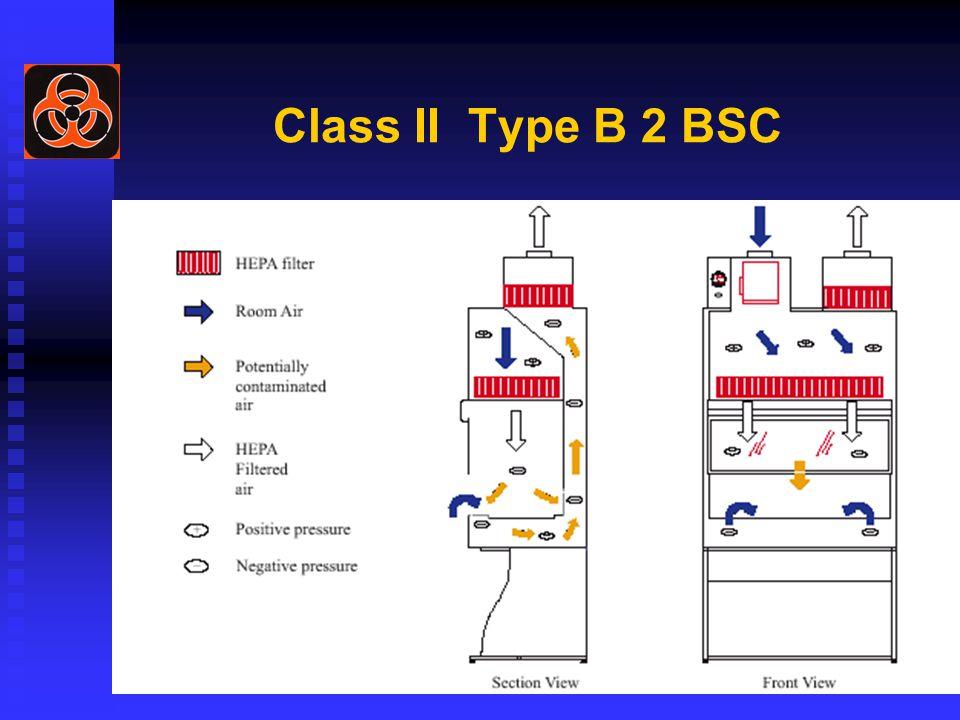 Class II Type B 2 BSC