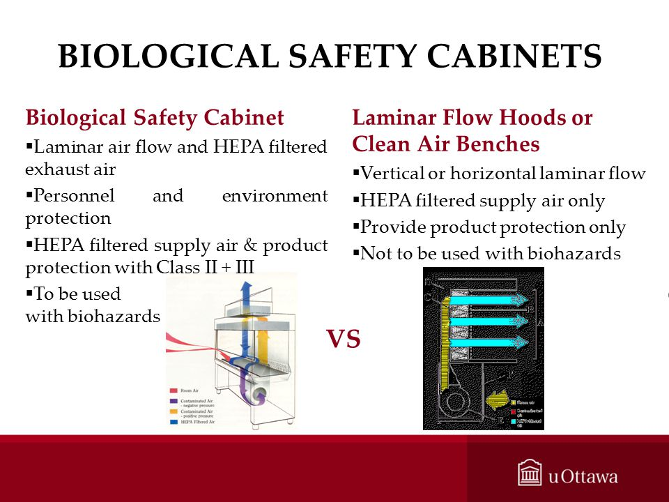 BIOLOGICAL SAFETY CABINETS Laminar Flow Hoods or Clean Air Benches Vertical or horizontal laminar flow HEPA filtered supply air only Provide product p
