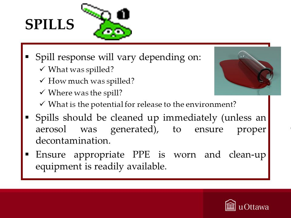 SPILLS Spill response will vary depending on: What was spilled? How much was spilled? Where was the spill? What is the potential for release to the en