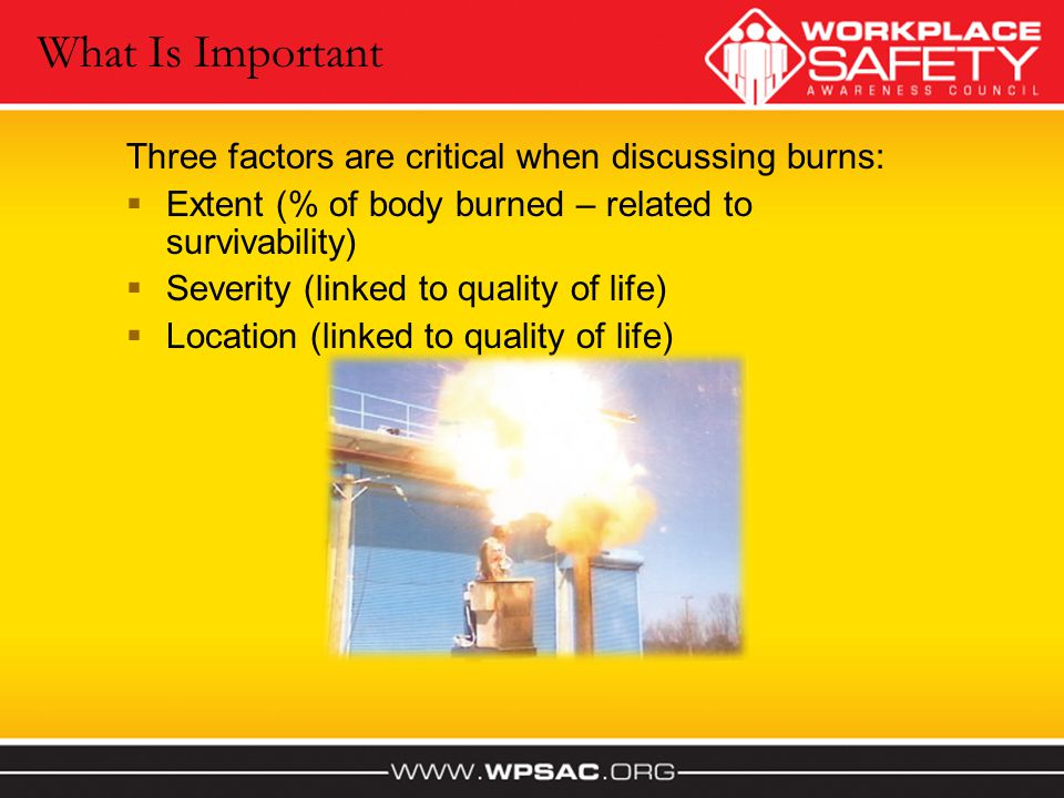 What Is Important Three factors are critical when discussing burns: Extent (% of body burned – related to survivability) Severity (linked to quality o