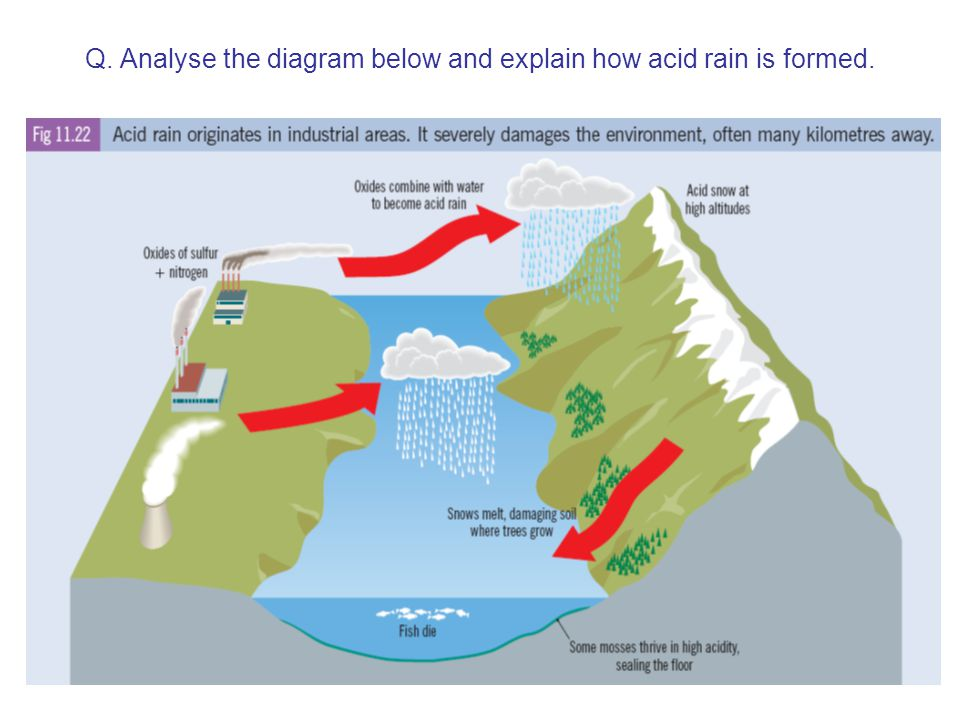Q. Analyse the diagram below and explain how acid rain is formed.