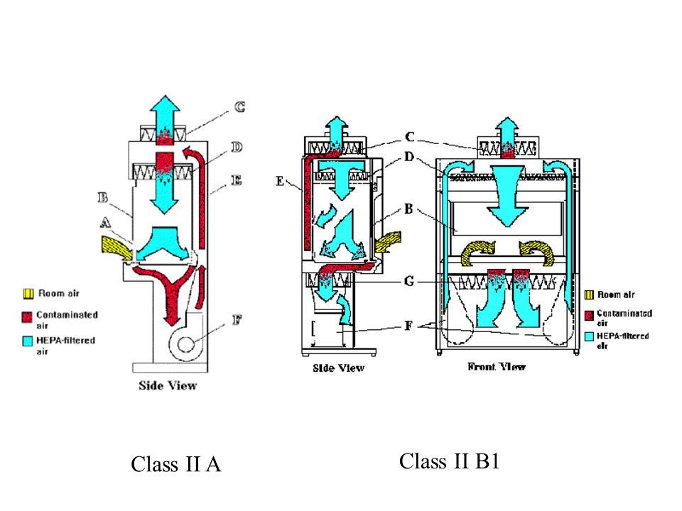 Class II A Class II B1