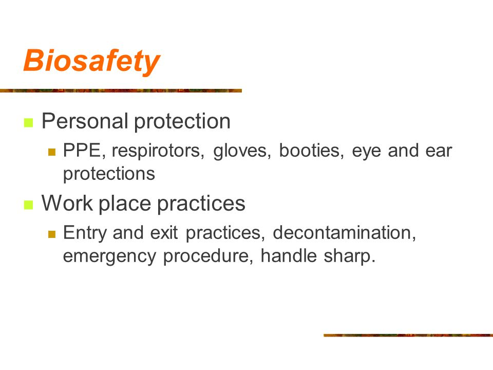 Biosafety Personal protection PPE, respirotors, gloves, booties, eye and ear protections Work place practices Entry and exit practices, decontaminatio