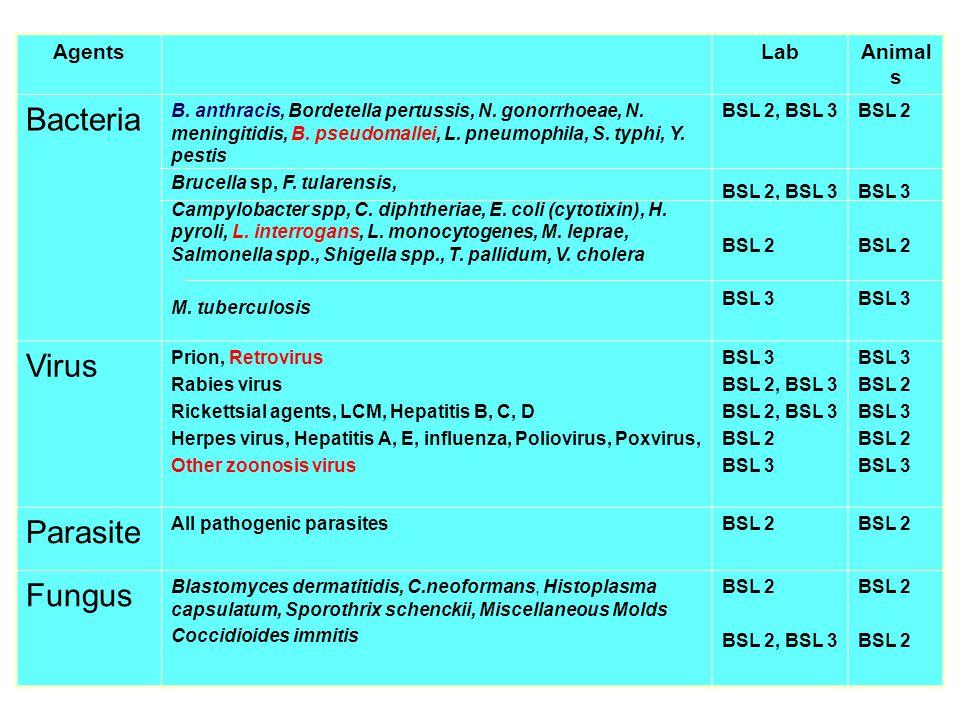 AgentsLabAnimal s Bacteria B. anthracis, Bordetella pertussis, N. gonorrhoeae, N. meningitidis, B. pseudomallei, L. pneumophila, S. typhi, Y. pestis B