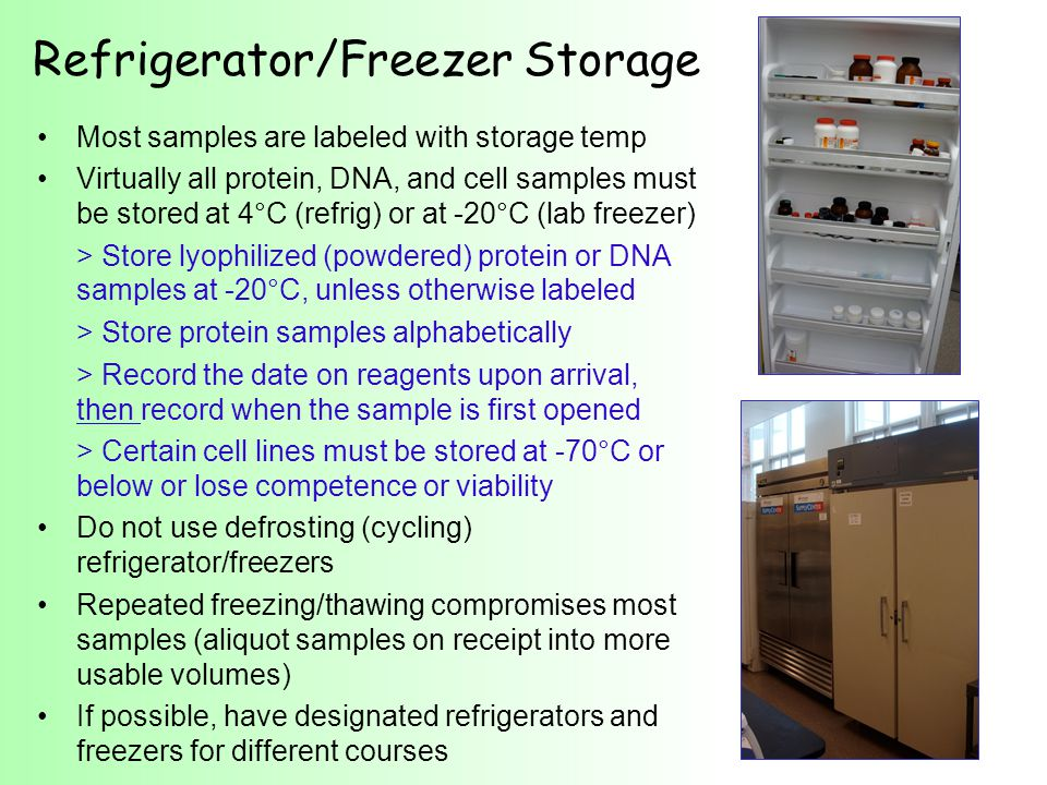 Refrigerator/Freezer Storage Most samples are labeled with storage temp Virtually all protein, DNA, and cell samples must be stored at 4°C (refrig) or at -20°C (lab freezer) > Store lyophilized (powdered) protein or DNA samples at -20°C, unless otherwise labeled > Store protein samples alphabetically > Record the date on reagents upon arrival, then record when the sample is first opened > Certain cell lines must be stored at -70°C or below or lose competence or viability Do not use defrosting (cycling) refrigerator/freezers Repeated freezing/thawing compromises most samples (aliquot samples on receipt into more usable volumes) If possible, have designated refrigerators and freezers for different courses